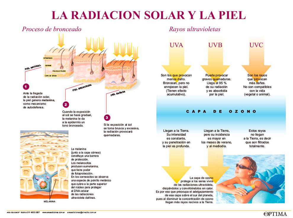 Radiación solar y piel